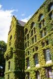 πανεπιστήμιο του Lund 02 βιβλ&iota Στοκ εικόνες με δικαίωμα ελεύθερης χρήσης