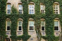 Πανεπιστήμιο του Princeton Στοκ Εικόνες