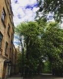 πανεπιστήμιο Στοκ εικόνα με δικαίωμα ελεύθερης χρήσης