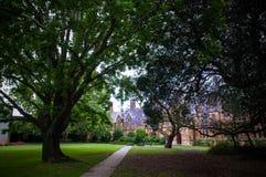 Πανεπιστημιούπολη USYD Στοκ Φωτογραφίες