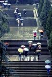 Πανεπιστημιούπολη βροχής Στοκ εικόνες με δικαίωμα ελεύθερης χρήσης