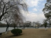 πανεπιστημιούπολη του πανεπιστημίου Zhejiang Στοκ Εικόνα