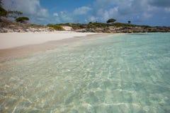 Πανευτυχές σαφές ωκεάνιο νερό στοκ εικόνες