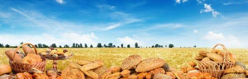 Πανοραμικά ψημένο φωτογραφιών πρόσφατα ψωμιά στον τομέα σίτου υποβάθρου Στοκ φωτογραφία με δικαίωμα ελεύθερης χρήσης