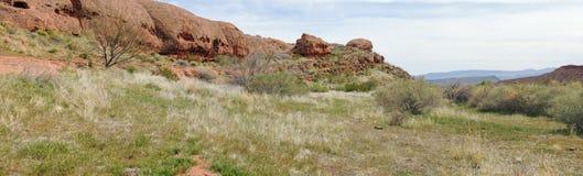 Πανοραμικές απόψεις ερήμων από τα ίχνη πεζοπορίας γύρω από το ST George Γιούτα περίπου το Hill του Beck, Chuckwalla, τον τοίχο χε Στοκ εικόνες με δικαίωμα ελεύθερης χρήσης