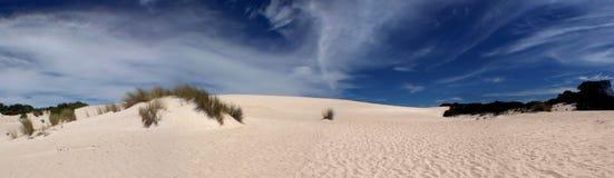 πανοραμική άμμος αμμόλοφω&nu Στοκ Φωτογραφίες