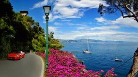 Πανοραμική άποψη από το δρόμο στο λιμάνι Portofino πολυτέλειας Στοκ εικόνες με δικαίωμα ελεύθερης χρήσης