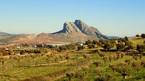 Πανοραμική άποψη από Antequera - την Μάλαγα-Ανδαλουσία Ισπανία Στοκ φωτογραφία με δικαίωμα ελεύθερης χρήσης