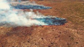 Πανοραμική άποψη ενός καψίματος λιβαδιών απόθεμα βίντεο