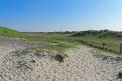 Πανοραμική άποψη καλυμμένη στη χλόη περιοχή άμμου στοκ φωτογραφίες