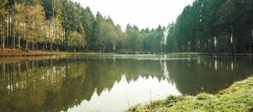 Πανοραμική άποψη μιας μικρής λίμνης στο δάσος στοκ φωτογραφία με δικαίωμα ελεύθερης χρήσης
