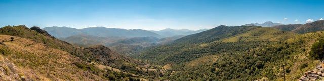 Πανοραμική άποψη στους λόφους στην περιοχή Balagne της Κορσικής Στοκ Εικόνες