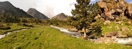 Πανοραμική άποψη σχετικά με έναν χείμαρρο στο βουνό στοκ φωτογραφίες