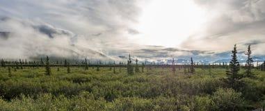 Πανοραμική άποψη της ανατολής πέρα από το εθνικό πάρκο Denali Στοκ εικόνες με δικαίωμα ελεύθερης χρήσης