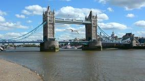 Πανοραμική άποψη της γέφυρας πύργων που εκτείνεται πέρα από τον ποταμό Τάμεσης στο Λονδίνο Αγγλία UK απόθεμα βίντεο