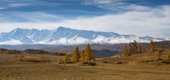 Πανοραμική άποψη της κορυφογραμμής Βορράς-Chuya βουνών της Δημοκρατίας Altai στοκ εικόνα με δικαίωμα ελεύθερης χρήσης