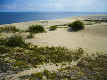 Πανοραμική άποψη του αμμόλοφου άμμου και της θάλασσας Στοκ φωτογραφίες με δικαίωμα ελεύθερης χρήσης