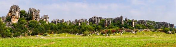 Πανοραμική άποψη του πέτρινου δάσους πυραμίδων ασβεστόλιθων Shilin - Yunnan, Κίνα Στοκ Φωτογραφία