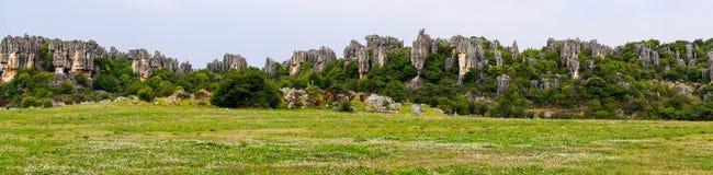 Πανοραμική άποψη του πέτρινου δάσους πυραμίδων ασβεστόλιθων Shilin - Yunnan, Κίνα Στοκ φωτογραφία με δικαίωμα ελεύθερης χρήσης