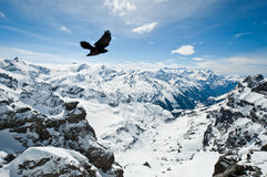 Πανοραμική άποψη των Άλπεων Urner Στοκ Φωτογραφίες