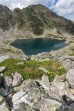 Πανοραμική άποψη των λιμνών Musalenski και των κίτρινων flores, βουνό Rila Στοκ φωτογραφία με δικαίωμα ελεύθερης χρήσης