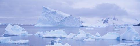 Πανοραμική άποψη των παγετώνων και των παγόβουνων στο λιμάνι παραδείσου, Ανταρκτική Στοκ φωτογραφία με δικαίωμα ελεύθερης χρήσης