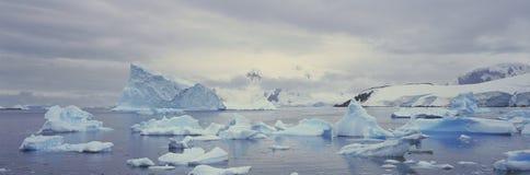 Πανοραμική άποψη των παγετώνων και των παγόβουνων στο λιμάνι παραδείσου, Ανταρκτική Στοκ Εικόνα