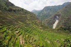 Πανοραμική άποψη των πεζουλιών τομέων ρυζιού Batad, επαρχία Ifugao, Banaue, Φιλιππίνες στοκ φωτογραφίες με δικαίωμα ελεύθερης χρήσης