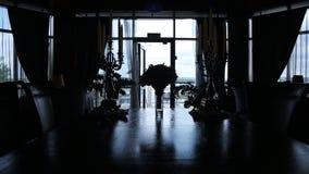 Πανοραμική άποψη των σκιαγραφιών του αριστοκρατικού δωματίου που διακοσμούνται φιλμ μικρού μήκους