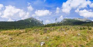 Πανοραμική άποψη των υψηλών βουνών Tatras στη Σλοβακία Στοκ Εικόνες