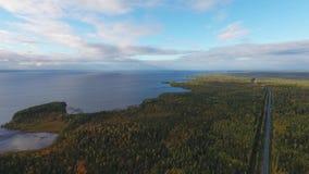 Πανοραμική θέα της λίμνης και του δάσους απόθεμα βίντεο