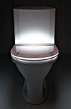 πανοραμική λήψη τουαλετών Στοκ Φωτογραφία