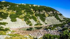 πανοραμική όψη βουνών Στοκ εικόνα με δικαίωμα ελεύθερης χρήσης