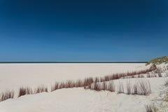 Πανοραμική όψη παραλιών σχετικά με το ολλανδικό νησί Texel Στοκ Φωτογραφίες