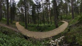 Πανοραμική όψη του τρέχοντας μονοπατιού βουνών Στοκ Εικόνα