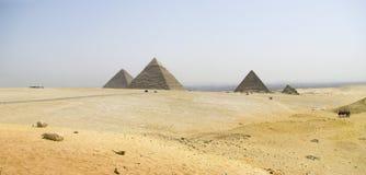 Πανοραμική όψη των πυραμίδων Giza Στοκ Φωτογραφία