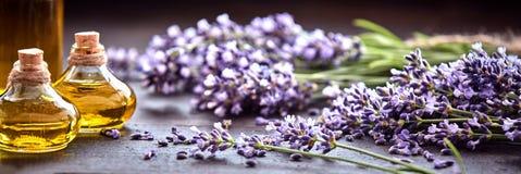 Πανοραμικό έμβλημα lavender με το ουσιαστικό πετρέλαιο Στοκ φωτογραφία με δικαίωμα ελεύθερης χρήσης