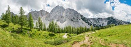 Πανοραμικό αλπικό τοπίο στην Αυστρία στοκ εικόνα με δικαίωμα ελεύθερης χρήσης