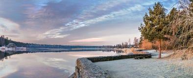 Πανοραμικό τοπίο με ένα μόνο παλαιό πεύκο κοντά σε έναν ποταμό Στοκ Εικόνες