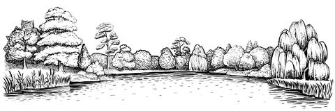Πανοραμικό τοπίο με το δάσος και τη λίμνη, διανυσματική συρμένη χέρι απεικόνιση Στοκ Εικόνα