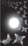 πανσέληνος πεταλούδων διανυσματική απεικόνιση