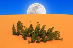 Πανσέληνος που αυξάνεται στην έρημο στοκ εικόνες με δικαίωμα ελεύθερης χρήσης