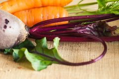 Παντζάρια και καρότο στοκ φωτογραφία με δικαίωμα ελεύθερης χρήσης