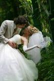 παντρεμένο πρόσφατα ζευγά&rh Στοκ Εικόνες
