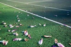 Παντός καιρού γήπεδο αντισφαίρισης στενό επάνω την άνοιξη με τα λουλούδια Στοκ Εικόνα