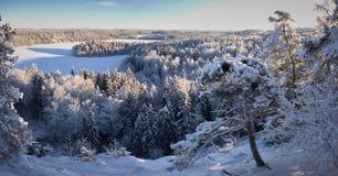 Πανόραμα άποψης λιμνών το χειμώνα Στοκ Φωτογραφίες