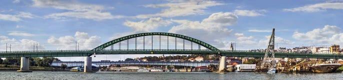 Πανόραμα Βελιγραδι'ου - γέφυρα παλαιού Sava και γέφυρα Branko με το Τ Στοκ εικόνες με δικαίωμα ελεύθερης χρήσης