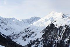 Πανόραμα βουνών με το χιόνι, τα δέντρα και το μπλε ουρανό το χειμώνα στις Άλπεις Stubai Στοκ Εικόνες