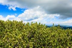 πανόραμα βουνών της Ιταλία&si Στοκ Φωτογραφία