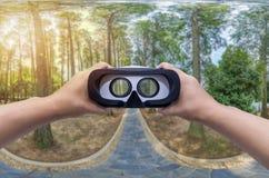Πανόραμα ενός φυσικού δάσους των φρέσκων πράσινων αποβαλλόμενων δέντρων με τα γυαλιά VR Στοκ Εικόνα